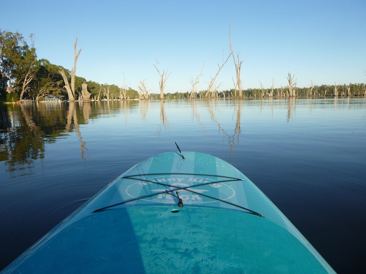 water, h2o, paddle board, sup, bundalong