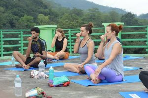 rishikesh yogpeeth, yoga teach training, yoga school, yoga, rishikesh, india, yoga, pranayama, Anulom vilom, green tara wellness