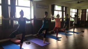 Rishikesh yogpeeth, yoga school, yoga, rishikesh, green tara wellness, 200 hour yoga teacher training, tree poses, teaching, class, group