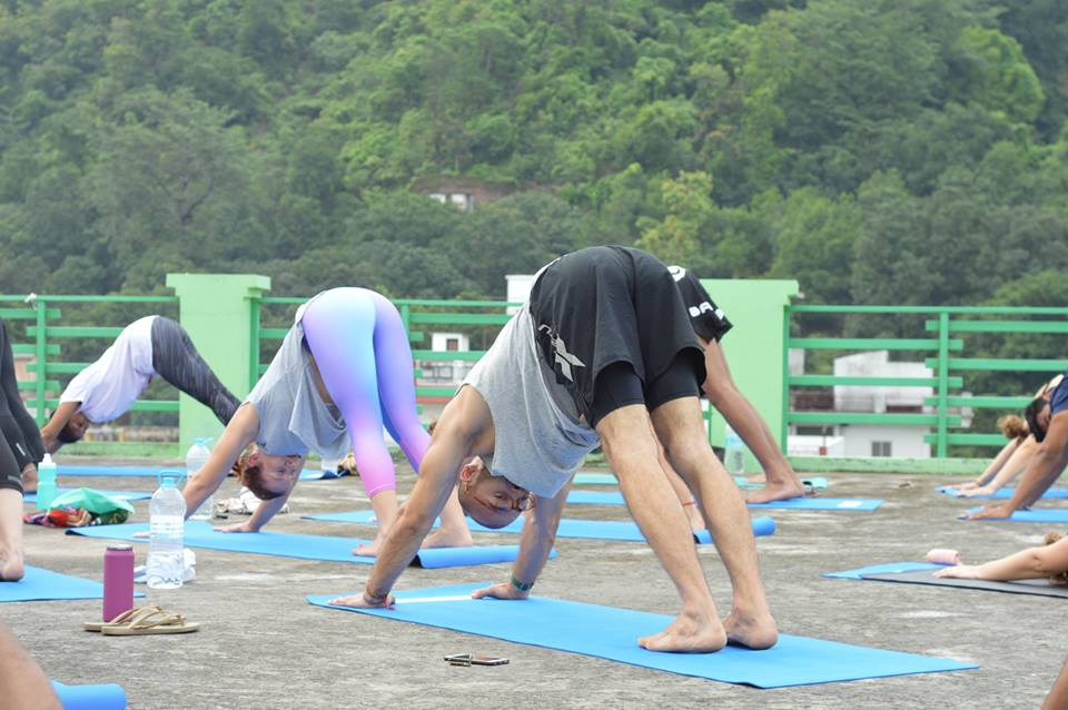 Downward dog, hatha yoga, india, rishikesh yogpeeth,